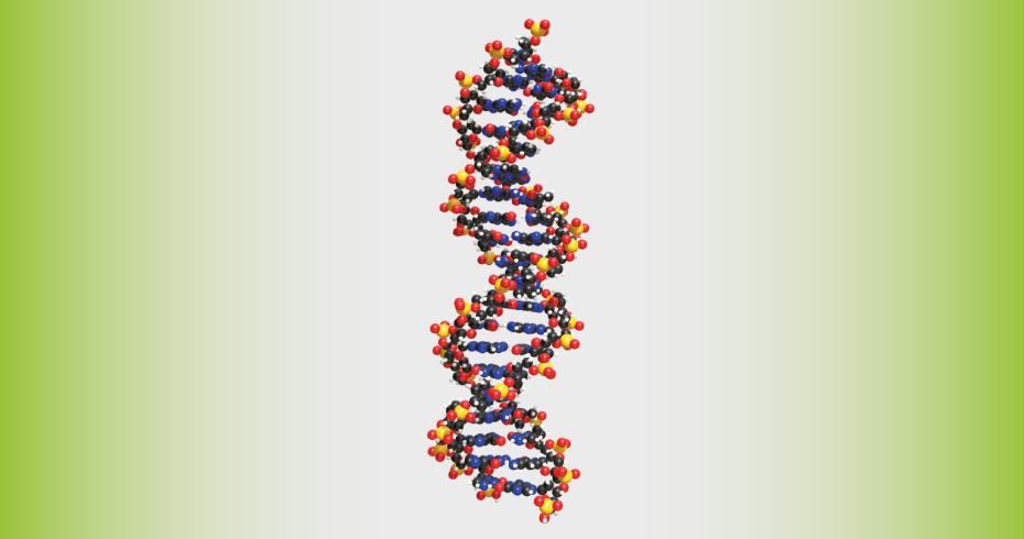 Современные методы выделения ДНК