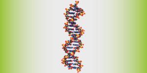 Сучасні методи виділення ДНК