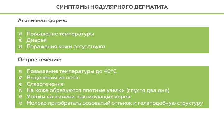 симптомы нодулярного дерматита