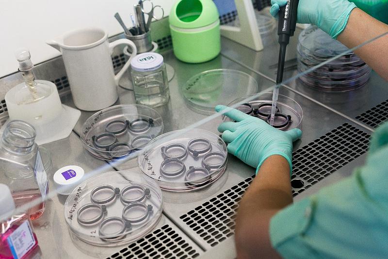 основные направления развития биотехнологии