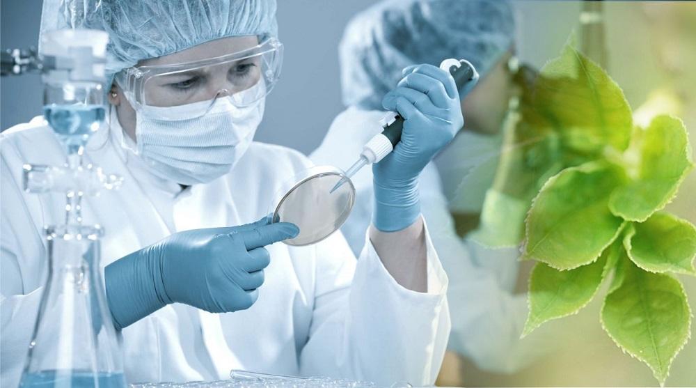 методы биотехнологии