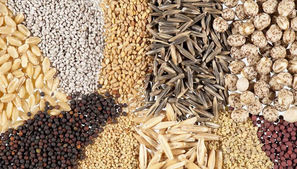 Методы оценки качества кормов для животных